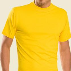 Shirt sind besonders hochwertige Geschenkidee